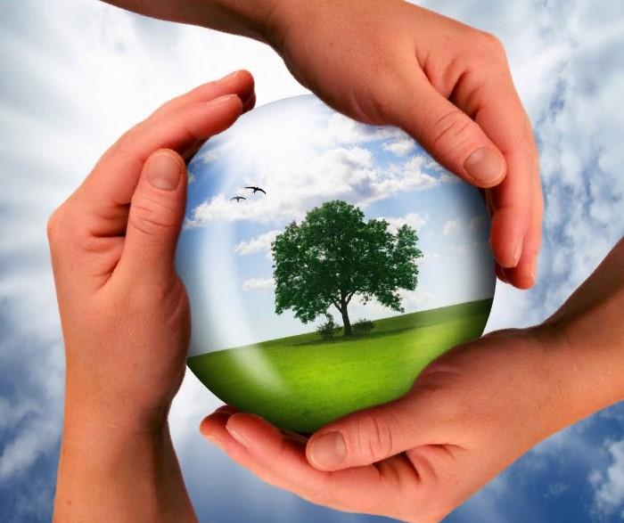 Экспертиза экологии среды
